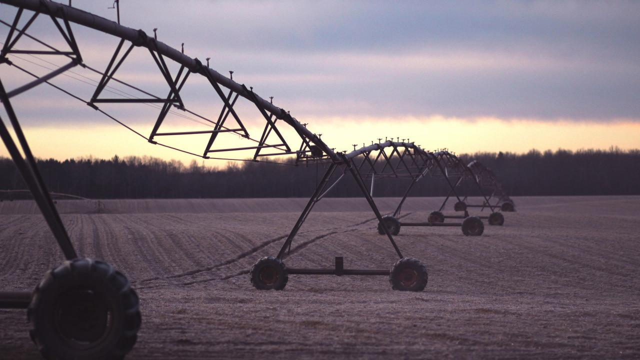 Pivot in field at sunset.