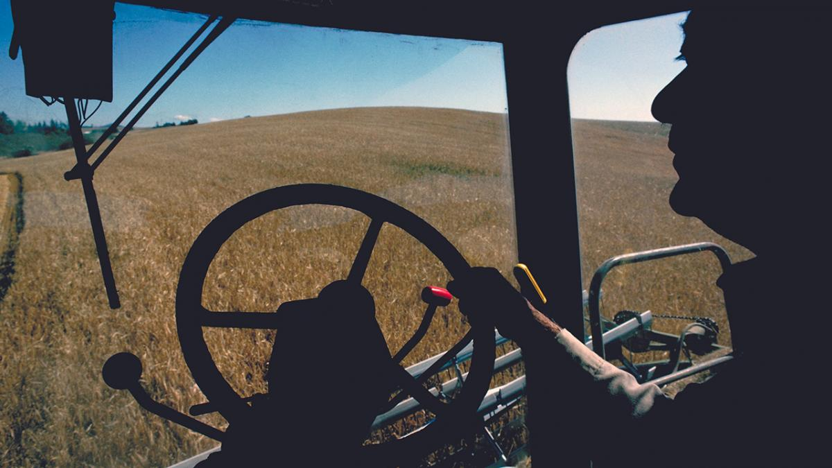 Silhouette of person driving combine.