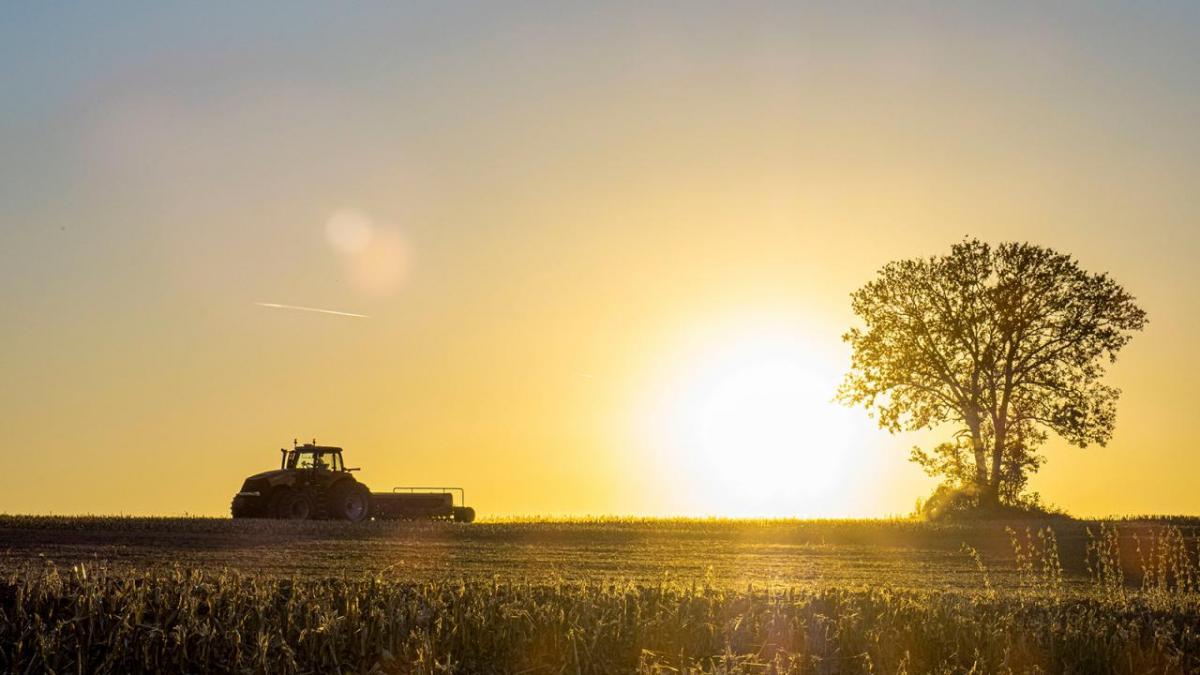 Harvesting field at dusk.