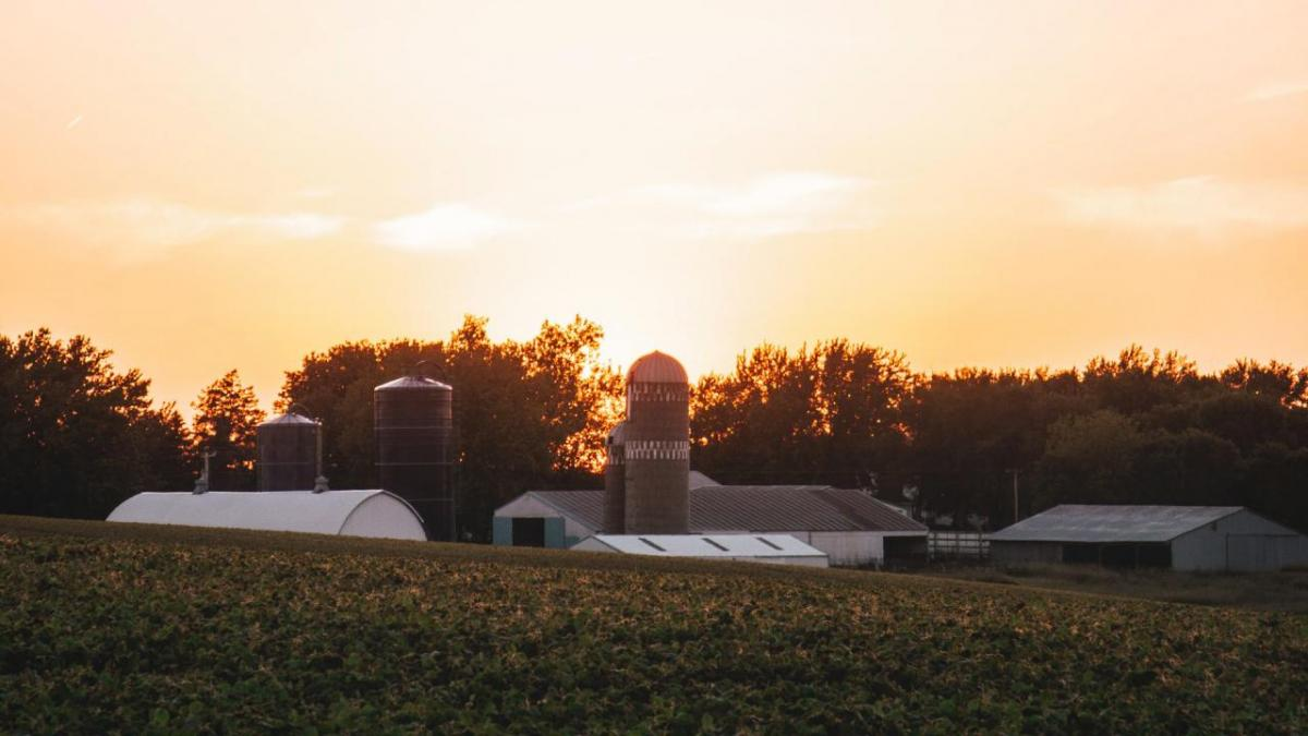 Farm buildings shown at sunset.