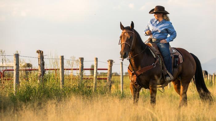 Woman on horseback at fence.