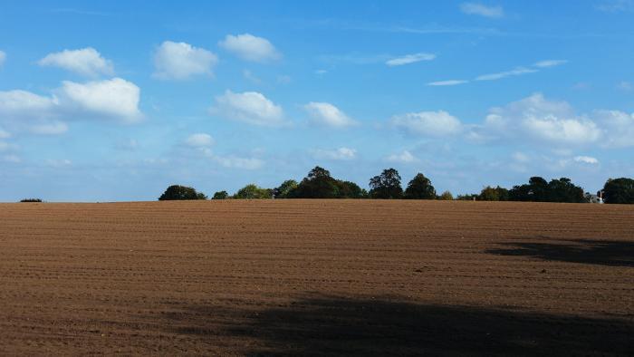 Tilled farmland.