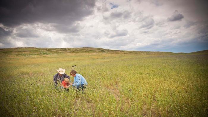 People in grassland pasture.