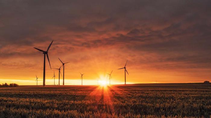 Windmills in field at twilight.